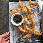 Pork & Scallion Wontons