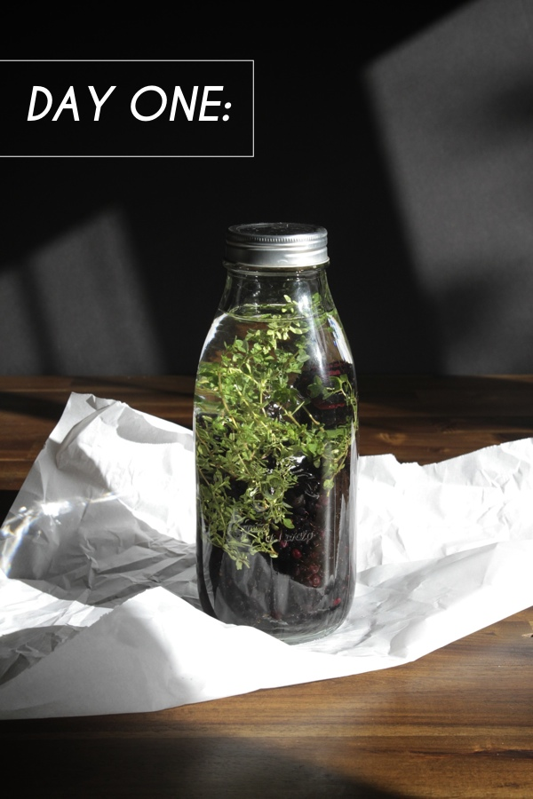 Blackberry Thyme Infused Vodka // shutterbean