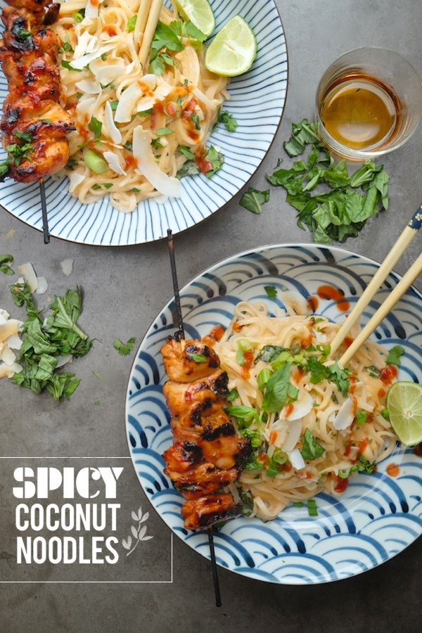 A tasty weeknight meal is only 20 minutes away. Check out the recipe for this Spicy Coconut Noodle dish on Shutterbean.com !