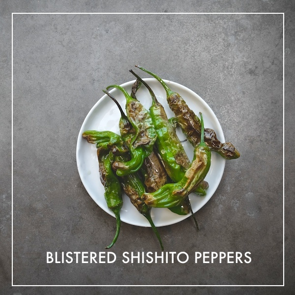 Blistered Shishito Peppers // shutterbean