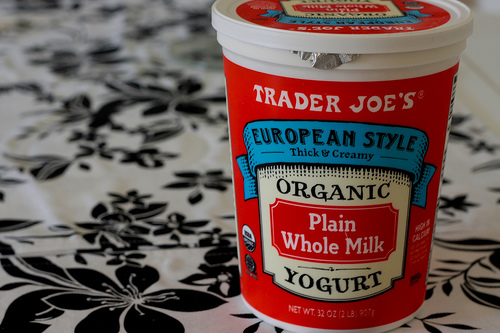 European Style Organic Plain Whole Milk Yogurt