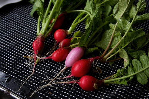 radish recipes?