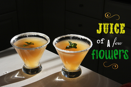 Cocktail Time: Juice of a Few Flowers!