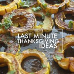 Last Minute Thanksgiving Ideas to help you prepare for the big day! You'll find a good collection at Shutterbean.com!