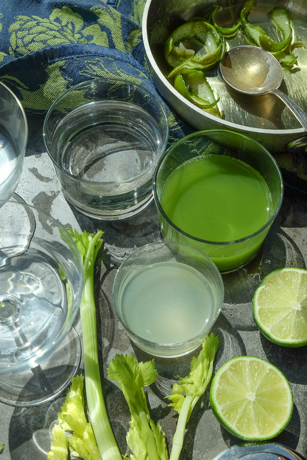 A refreshing Celery Gimlet made with a combination of celery, gin & lime. Find the recipe on Shutterbean.com