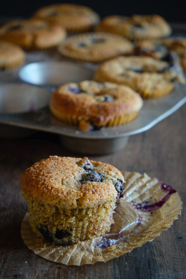 Gluten Free Blueberry Cornmeal Muffins for your weekday breakfasts. Find the recipe on Shutterbean.com!