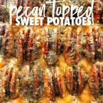 Pecan Topped Sweet Potatoes for a traditional Thanksgiving Feast! Find the recipe on Shutterbean.com