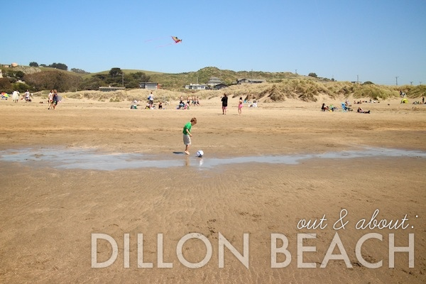 out & about: dillon beach