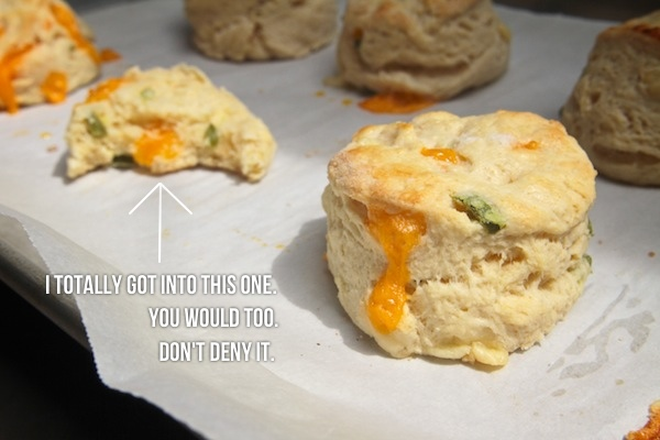Cheddar Jalapeño Biscuits // shutterbean