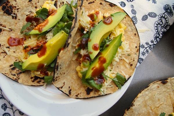 Breakfast Tacos // shutterbean