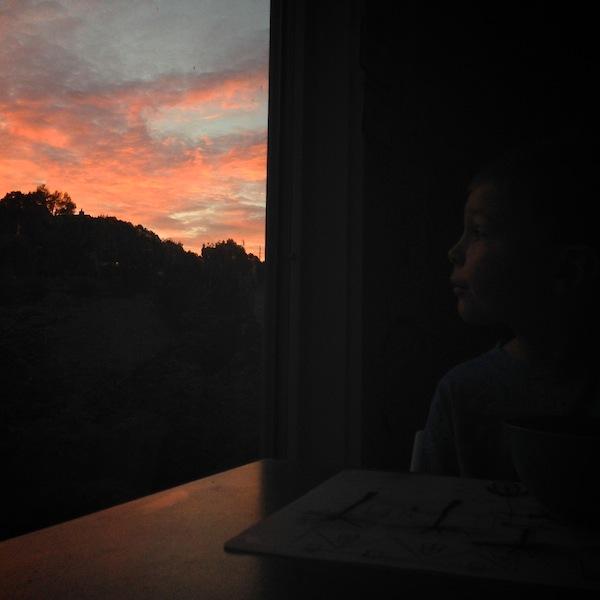 My Everyday Life: Week 43