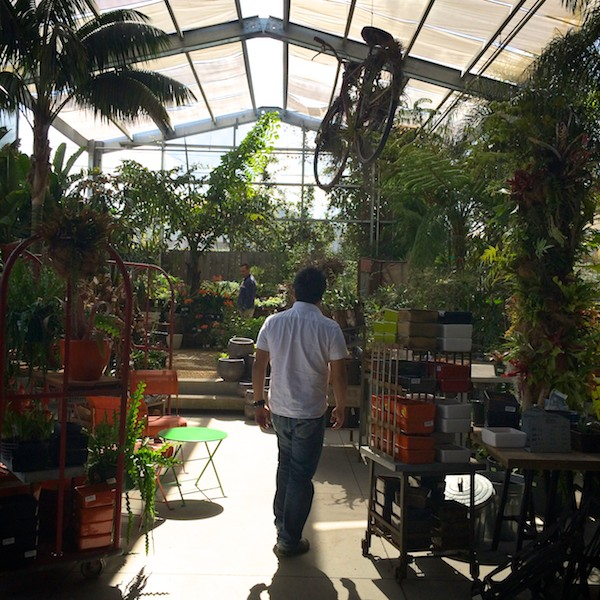 Out & About: Flora Grubb Gardens