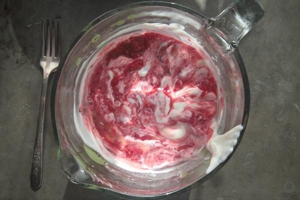 Raspberry Lemon Yogurt Popsicles // shutterbean