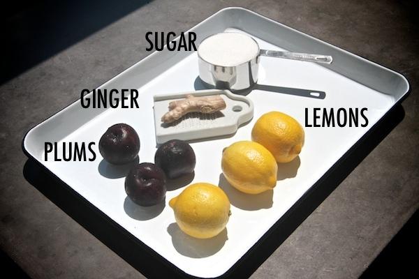 Plum Ginger Coolers // shutterbean