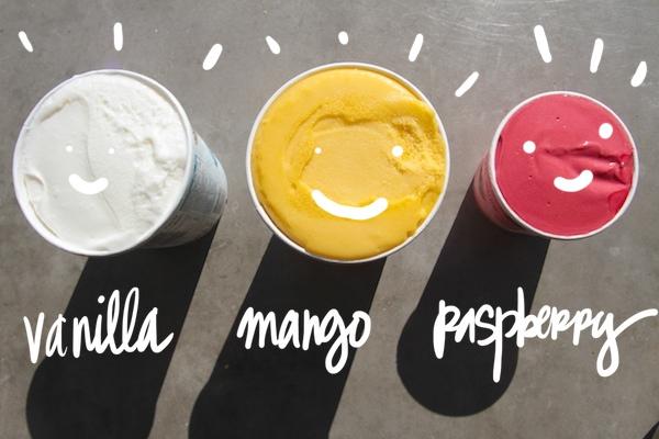 Raspberry Mango Ice Cream Cake // shutterbean