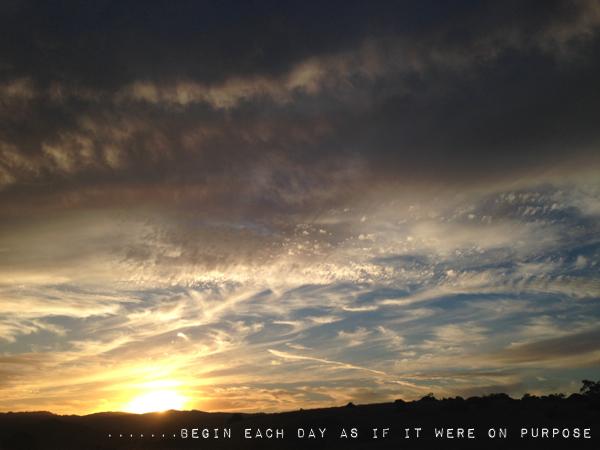 Begin each day // shutterbean