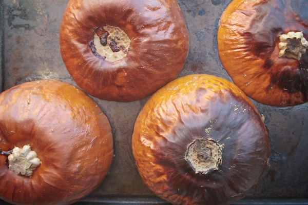Maple Bourbon Pumpkin Butter // shutterbean