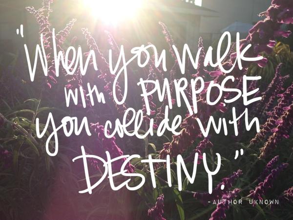 When you walk with purpose // shutterbean