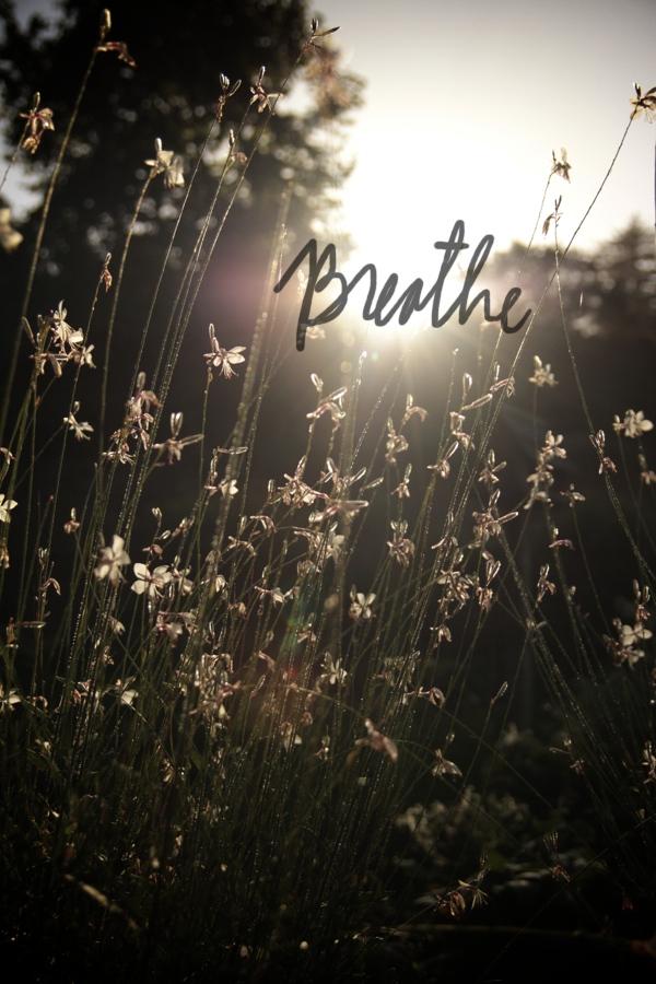 Breathe // shutterbean