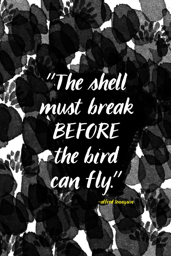 The shell must break // shutterbean
