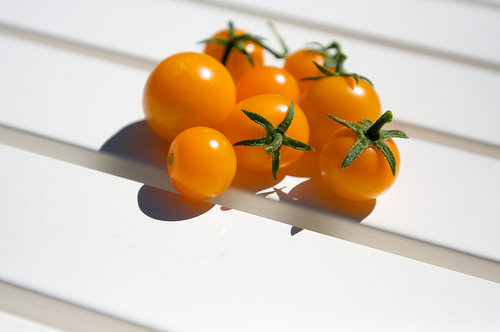 snacking on sungolds