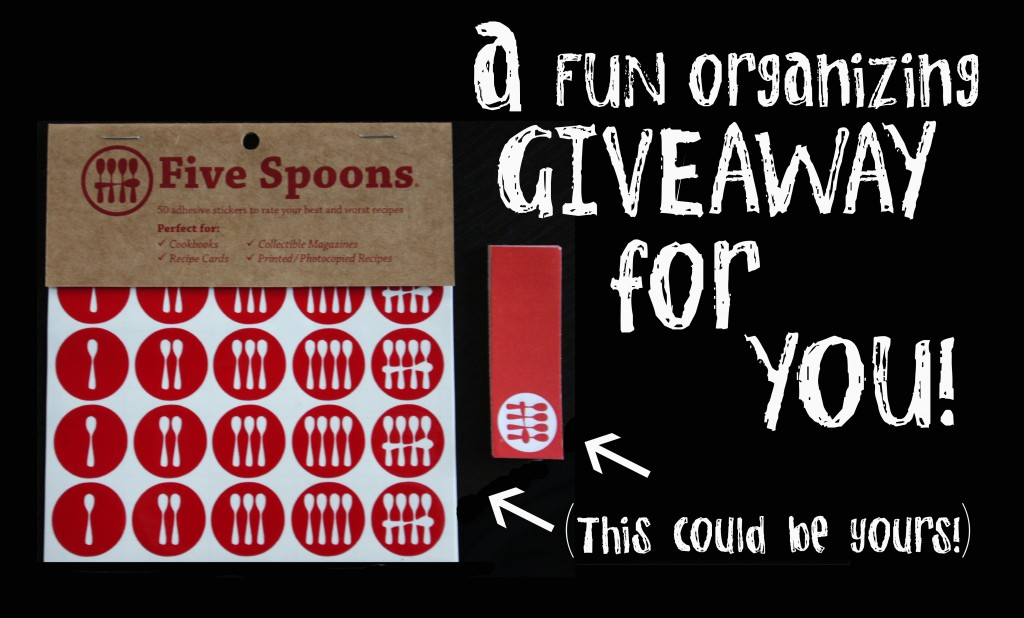 Organizing GIVEAWAY from Five Spoons!