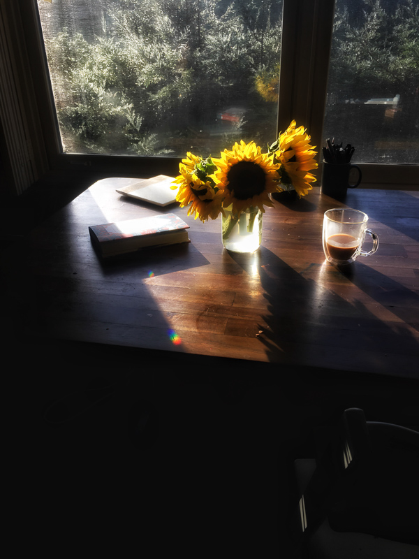 My Everyday Life: Week 16 on Shutterbean.com