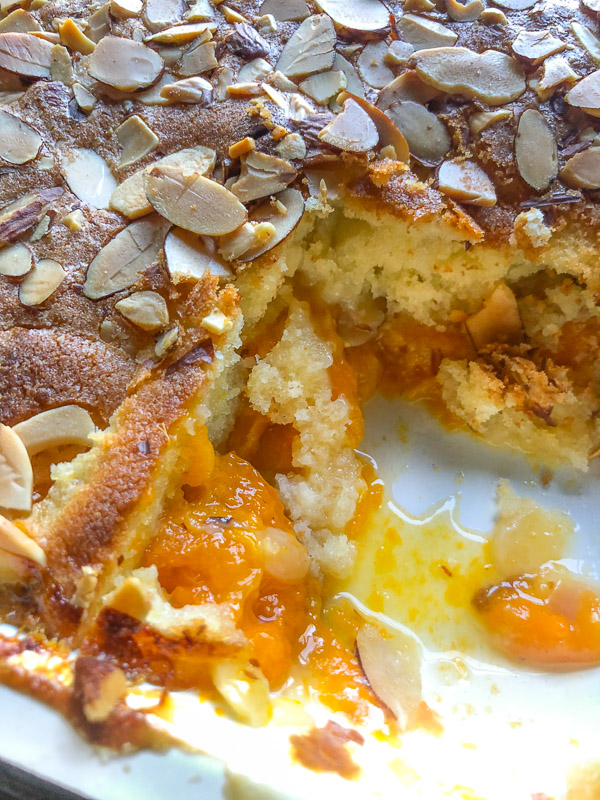 Apricot Almond Cake for summer parties! Find the recipe on Shutterbean.com