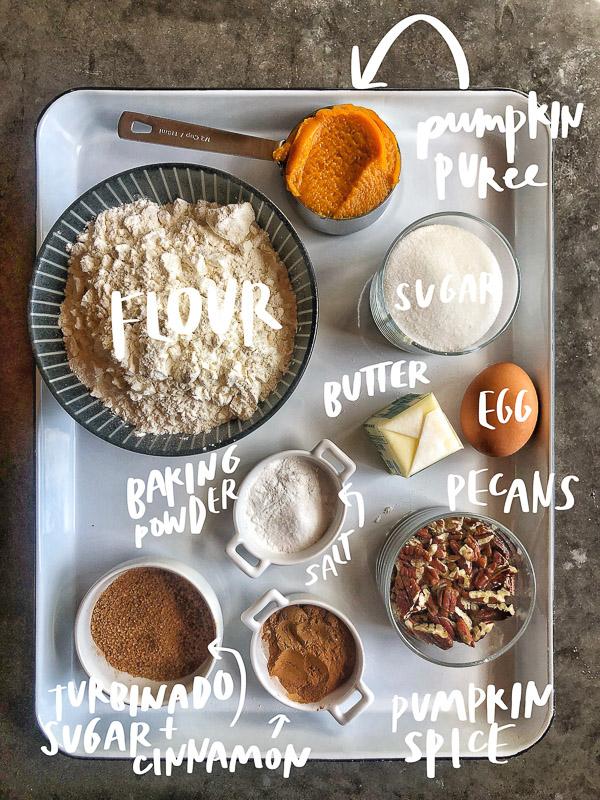 Celebrate Pumpkin season with Pumpkin Pecan Biscotti with your morning coffee! Recipe on Shutterbean.com