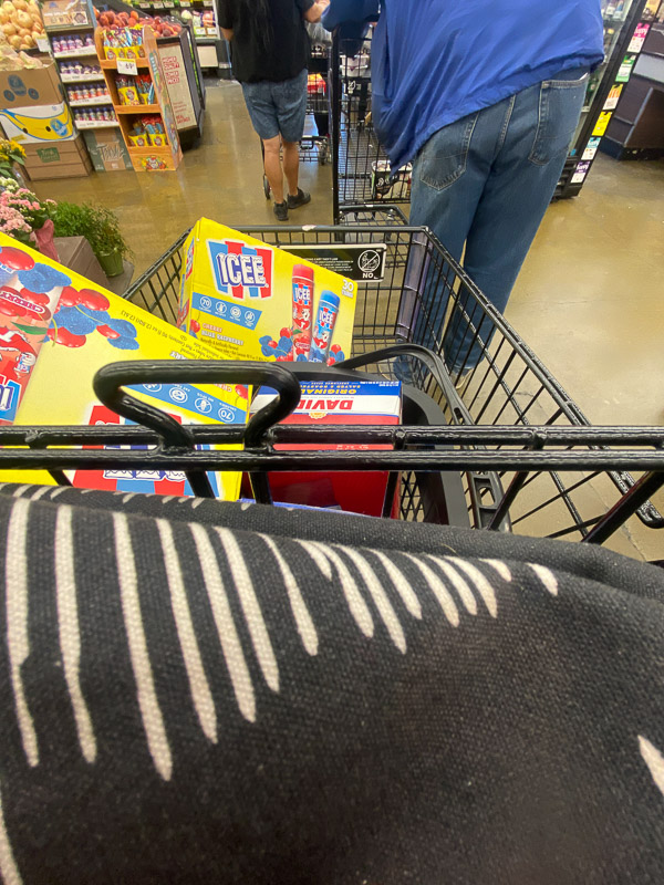 My Everyday Life Week 25 of 2021- a photography series by Tracy Benjamin of Shutterbean.com